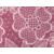 #38 粉紅蕾絲